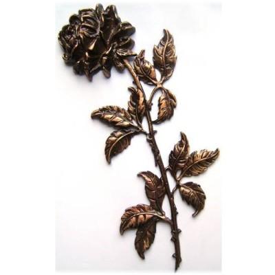 Троянда ROZ13