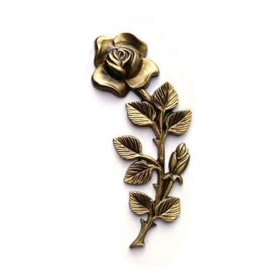Роза ROZ16