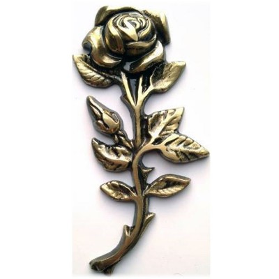 Роза ROZ6