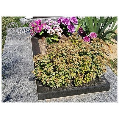 Надгробная плита 69n